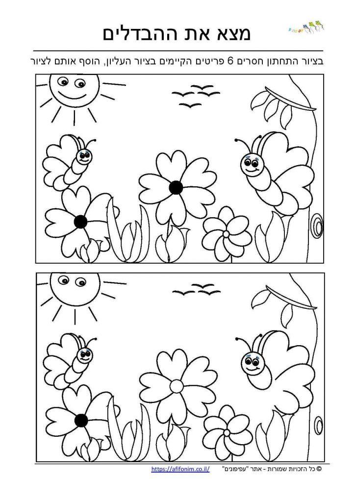 מצא הבדלים פרפרים