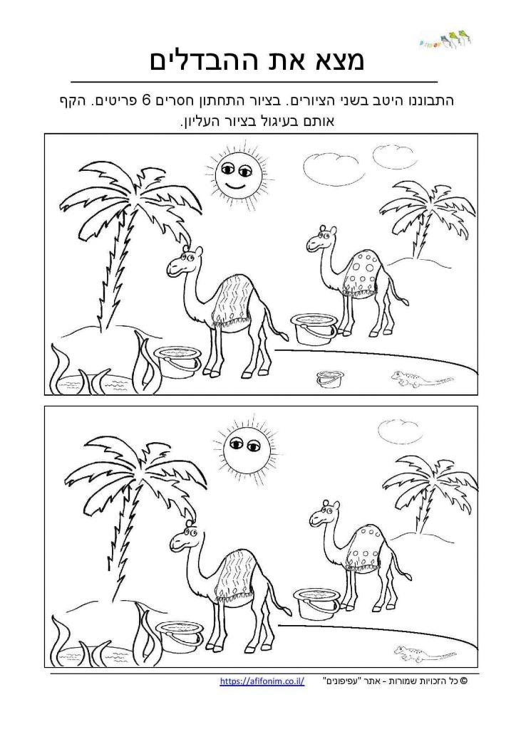 מצא את ההבדלים
